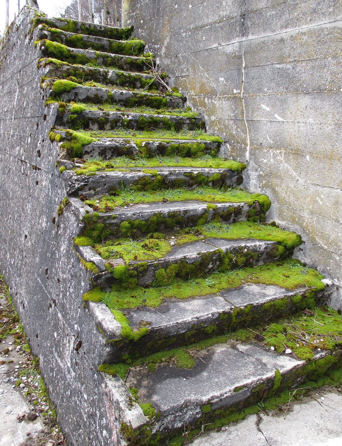 Stufen 1
